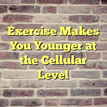 Exercise Makes You Younger at the Cellular Level