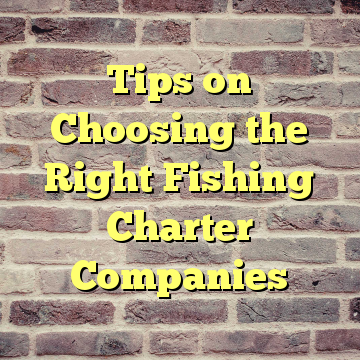 Tips on Choosing the Right Fishing Charter Companies